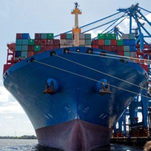 Bild Stadtführung Hamburg Containerschiff am Tollerhort