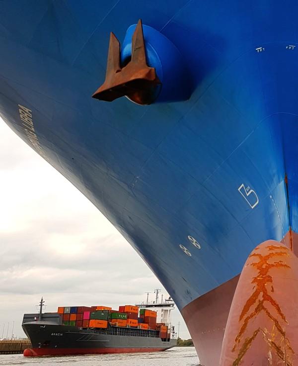 Bild Stadtführung Hamburg zwei Containerfrachter am Terminal Tollerort